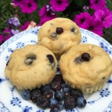 Gluten-free Blueberry Muffins with Freeze-Dried Blueberries