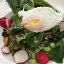 Gluten-free salad with an egg from The Goose