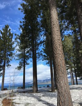 The pretty scenery at Lake Tahoe