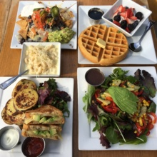 Gluten free meal of salads, sandwiches, and more from Venice Ale House