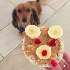 Gluten-free Bear Rice Cake with fruit