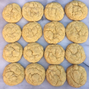Sixteen gluten-free sugar cookies