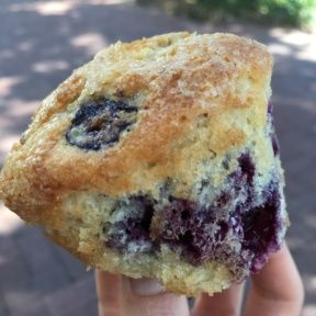 Gluten-free blueberry muffin from Lilac Patisserie