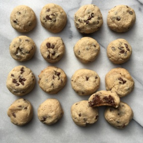 Gluten-free, Paleo, Egg Free Chocolate Chip Cookies