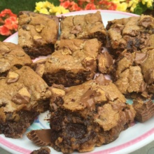 Gooey Gluten-free Reese's Blondies