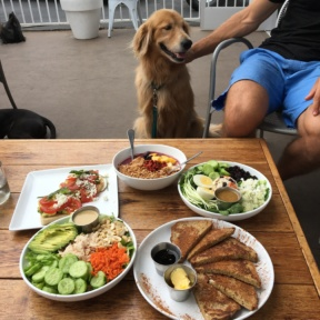 Odie enjoying lunch with us at GOODONYA