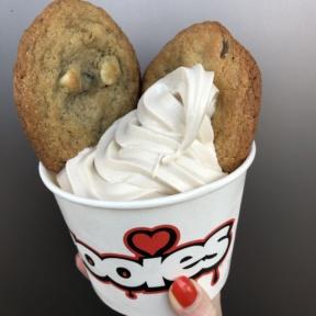 Frozen yogurt with cookies from Zooies